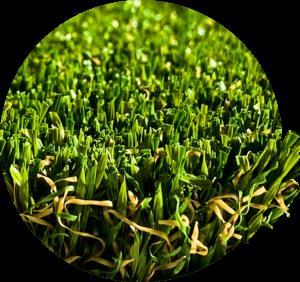 champion_ascari sport műfű grassland