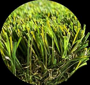 trinidad műfű grassland